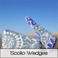 ScolioWedges